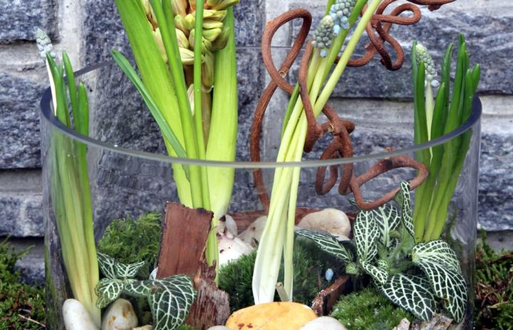 atelier-art-floral-composition-mousse-fleurs-bleues-galets-vase