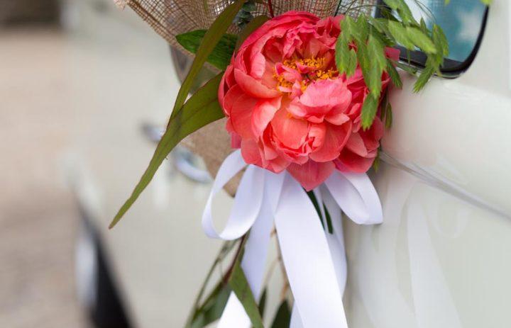 decoration-voiture-mariage-porte-pivoine-corail