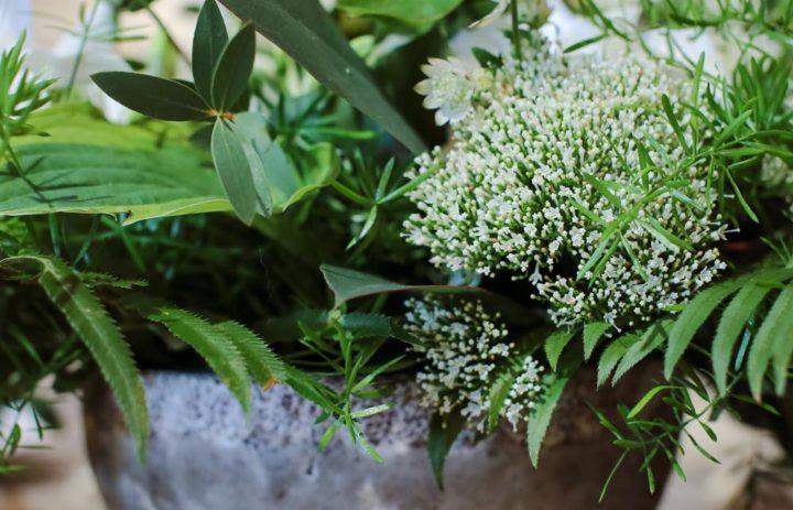 bouquet-de-saison-pot-blanc-vert