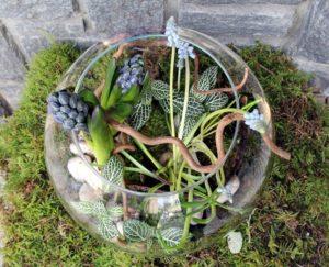 Composition dans un vase bulle avec jacinthe galets et mousse.
