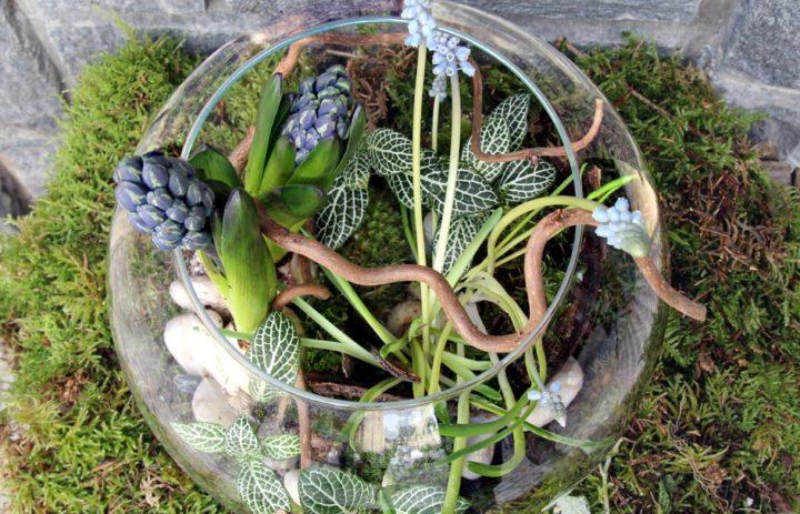 atelier-art-floral-composition-mousse-fleurs-bleues
