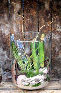 Composition dans un vase en verre jacinthe et écorce