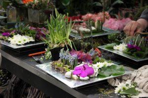Compositions fleurs piquées dans la mousse.