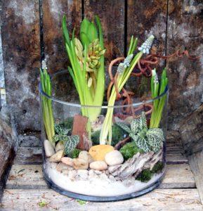 Composition jacinthe galets et mousse dans un vase cylindre large