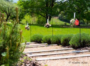 3 suspensions sur fer forgé longeant un escalier avec rose, lierre boule et pois de senteur